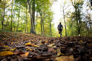 Foto auf Leinwand Jogging Mann beim joggen im Wald
