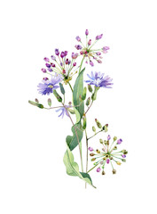 Watercolor bouquet of blue flowers and garlic flowers