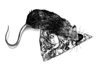 mouse crawling on a piece of cheese pizza with mushrooms and sausage, sketch vector graphics monochrome illustration on white background
