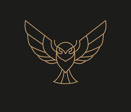 Flying owl logo in simple line style
