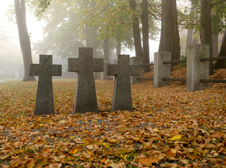 Grey granite crosses on a german soldier tomb. Graves of unknown soldiers on German military cemetery in Kyiv, Ukraine. Autumnal morning scene Wall mural