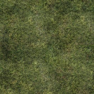 Grass Texture Seamless Material Map