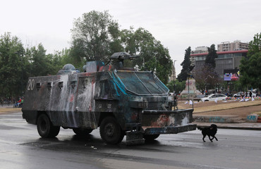 A dog runs past a riot police vehicle during a protest against Chile's state economic model in Santiago, Chile