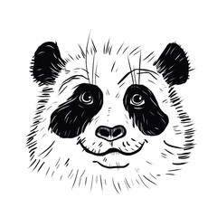 Panda animal cute face. Asian panda head portrait. Realistic fur bamboo portrait of a funny black and white panda animal isolated on a white background.