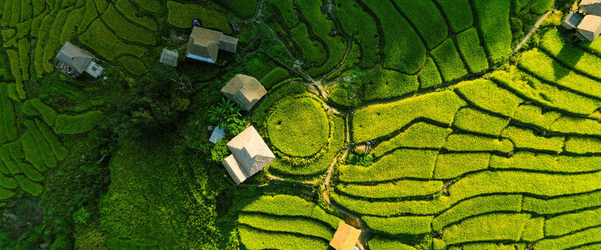 Aerial view morning scene of Pa Bong Piang terraced rice fields, Mae Chaem, Chiang Mai Thailand