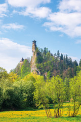 Orava Castle on the high steep rock. one of the most beautiful castles in Slovakia. beautiful sunny day. trees in green foliage on a meadow with blooming dandelions. popular travel destination