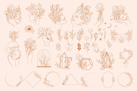 Set of abstract leaf and flower elements, hands and girl portrait in one line style. Illustration in minimalistic style. Editable vector illustration