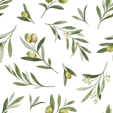 Watercolor vector seamless pattern of olive branches and leaves.