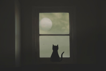 black cat looks curiously at the moon from the window of the house