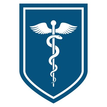 Medical symbol - Staff of Asclepius or Caduceus with wings icon on the flat shield. The snake entwined around a wooden staff with wings. Other name Rod of Aesculapius