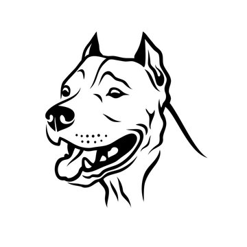 American Pitbull Terrier dog - isolated vector illustration