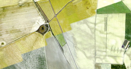Harvest, tribute to Picasso, abstract photography of the Spain fields from the air, aerial view, representation of human labor camps, abstract art, abstract naturalism,