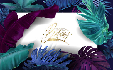Vector frame banner with color tropical leaves