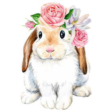 poster, cute bunny with roses flowers on an isolated white background, animals illustration