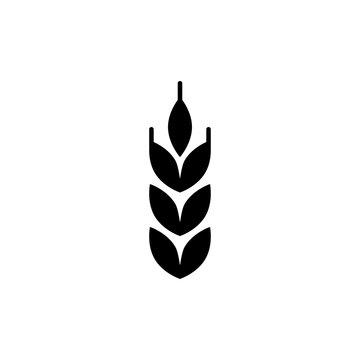 wheat icon trendy