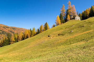 Wall Mural - Autumn mountain landscape with yellow larch trees. Austrian Alps, Tyrol, Austria.