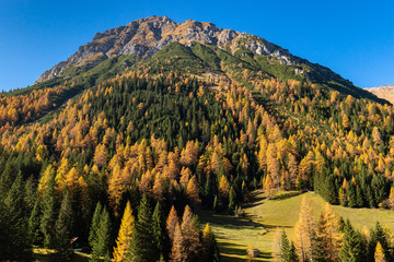 Wall Mural - Autumn colours scenic in the Austrian Alps. Fall mountain landscape.