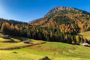 Wall Mural - Idyllic autumn mountain landscape. Travel concept. Hiking in Austrian Alps, Tyrol, Stubai Alps.