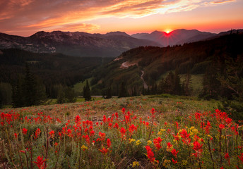 Summer scene in the Wasatch Mountains, Utah, USA.
