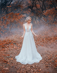 bride in a white luxurious, modern, long dress with a seductive neckline. Tulle and lace. Elegant collected hairstyle with decoration, silver diadem twig. Autumn forest red leaves of trees, blue fog