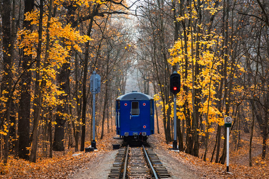 Railroad single track through the woods in autumn. Fall landscape. red stop semaphore signal. Last railway carriage of blue train back view.