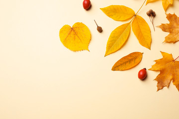 Flat lay composition with autumn leaves on beige background. Space for text