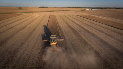 Farmer harvesting soybeans in Midwest