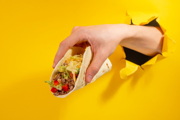 Hand holding a taco Wall mural