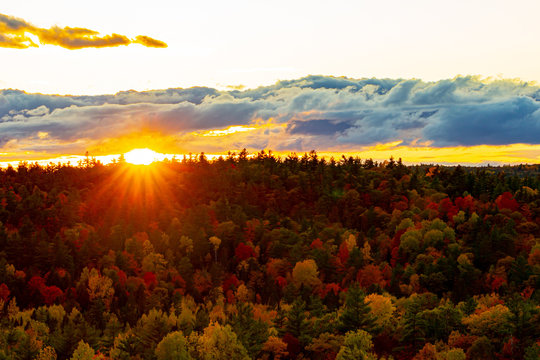 Sunset Over a Vibrant Autumn Forest