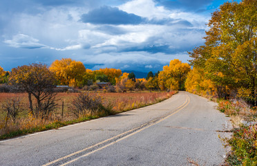 Counrty road winds through vibrant autumn landscape of New Mexico Fotoväggar