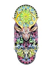 Drawing deer head with horns, skull, mandala.