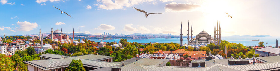 In de dag Oude gebouw The Blue Mosque, The Hagia Sophia and the Istanbul roofs, beautiful sunny panorama