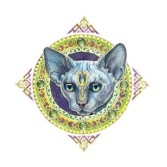 Drawing sphinx cat head with mandala