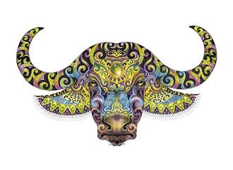 Sketch buffalo head with big horns, patterns