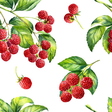 A seamless raspberry pattern on white background.