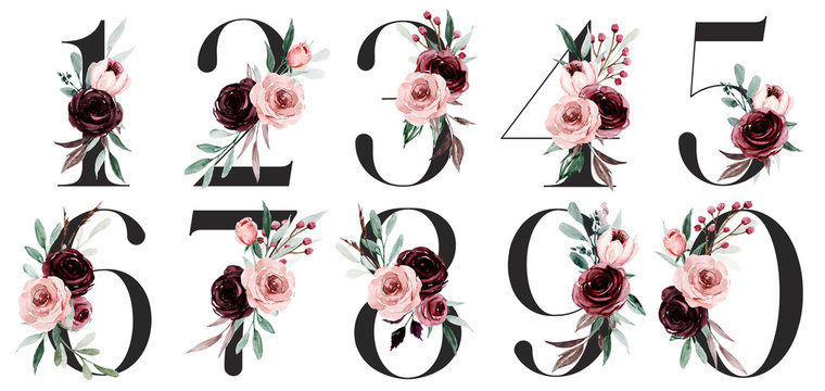 Numbers set with watercolor flowers roses hand painting. Perfectly for anniversary, wedding invitation, greeting card, logo, poster and other floral design. Isolated on white background.