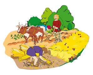 Keltische Landwirtschaft
