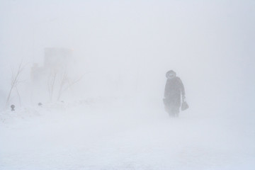 Fototapeta Low visibility during a blizzard. Strong snowstorm in the city. A pedestrian walks along the snowy sidewalk. Strong wind and cold weather. Severe northern climate. Anadyr, Chukotka, Siberia, Russia.