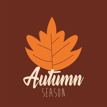 hello autumn season leaf and calligraphy