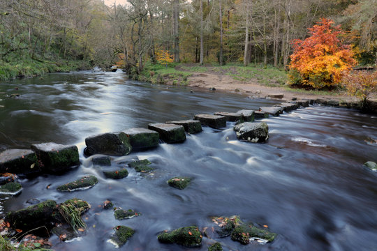 stepping stones across river in autumn