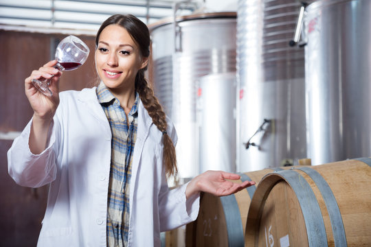 specialist in white coat examines glass of wine on the background of barrels for fermentation