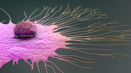 Scientific illustration of a migrating breast cancer cell - 3d illustration