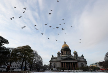 Birds fly over the Saint Isaac's Cathedral in Saint Petersburg