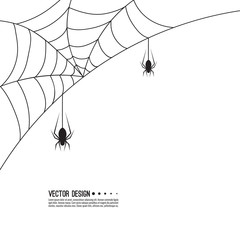 Vector illustration of creepy spider web and a spider. Decoration cobweb for Halloween