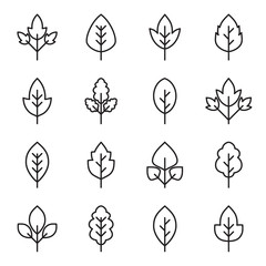 Set of simple leaf icons in linear style. Collection of vector pictograms of leaves of different tree species.