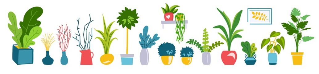 Houseplants flat illustrations vector set. Hand drawn flower pots with ornamental indoor plants