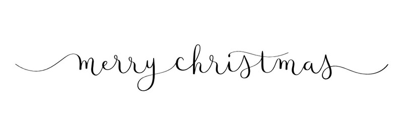 Wall Mural - MERRY CHRISTMAS vector brush calligraphy banner with swashes