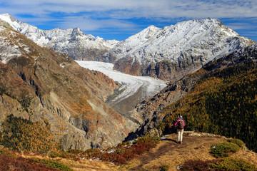 Wanderer mit Blick auf Alteschgletscher und Aletschwald aus Sicht von der Belalp / Female hiker with view of Aletsch glacier and Aletsch forest as seen from Belalp