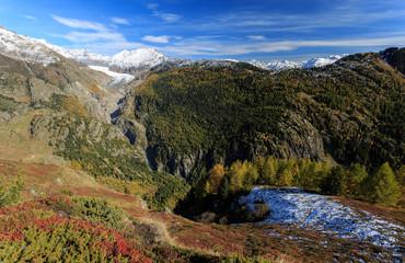Alteschgletscher und Aletschwald aus Sicht von der Belalp / Aletsch glacier and Aletsch forest as seen from Belalp