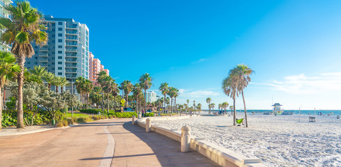 Tuinposter Palm boom Clearwater beach with beautiful white sand in Florida USA